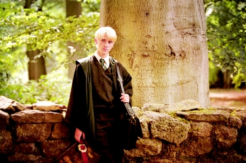 image from http://images4.fanpop.com/image/photos/17800000/Draco-3-draco-malfoy-17880689-500-333.jpg